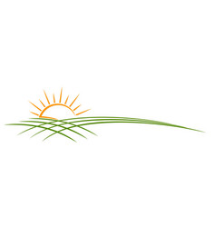Sun symbol with field vector