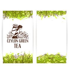 Green tea banner template vector
