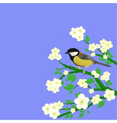 little bird perched vector image