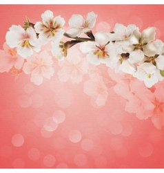 Blooming tree branch with pink flowers on bokeh vector image vector image