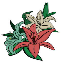 three pink turquoise and white lilies with green vector image