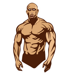 boxer muscle vector image