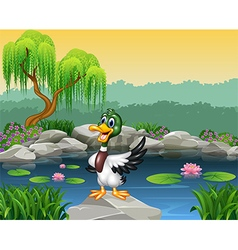 Cartoon funny duck presenting vector image