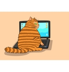 Cat works on the laptop vector