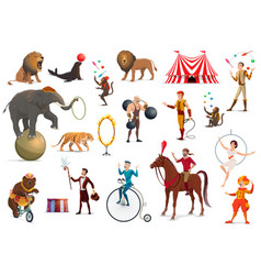 circus acrobat clown trained animals magician vector image