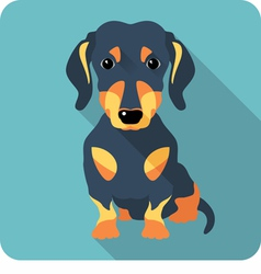 dog dachshund sitting icon flat design vector image