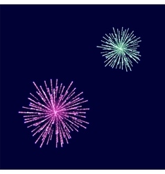 Fireworks Light up the Sky vector image