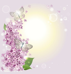 Floral background with butterflies and a lilac vector