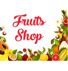 Fruit shop poster of tropical exotic fruits vector