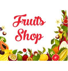 Fruit shop poster tropical exotic fruits vector