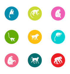 guenon icons set flat style vector image