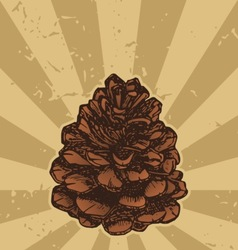 pinecone on grunge vector image vector image