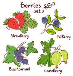 Berries set 3 vector image