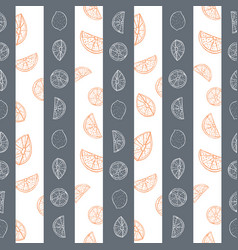 Orange and grey hand drawn citrus fruit and vector
