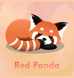 sleeping cute red panda vector image