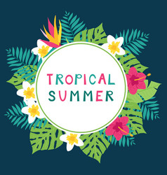 Summer time tropic background vector