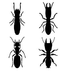 termites vector image