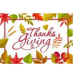 thanks giving greeting card with fallen leaves vector image