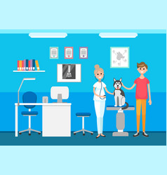 Veterinary clinic veterinarian and pet on checkup vector
