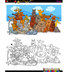 cats and dogs characters group color book vector image vector image