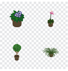 isometric plant set of plant flowerpot tree and vector image
