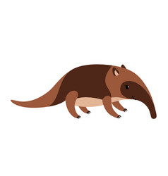 cute cartoon anteater isolated on white background vector image vector image