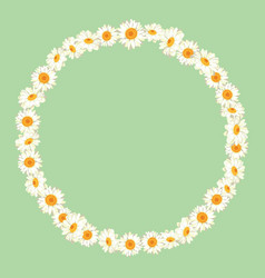 chamomile pattern on green background daisy chain vector image