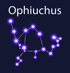 Constellation ophiuchus with stars in the night vector