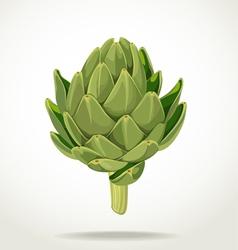 green fresh useful eco friendly artichoke vector image
