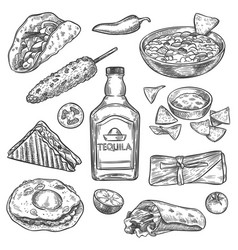 mexican food sketch national drink vector image