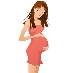 Pregnant woman holding her belly vector image