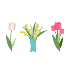 yellow and pink tulips different colors and types vector image