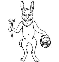 bunny contour vector image