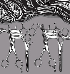 chrome professional scissors for hairdressers vector image
