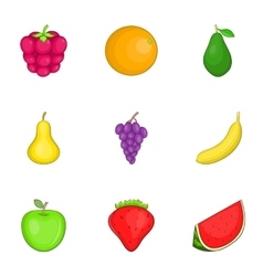Colored fruit icons set cartoon style vector image