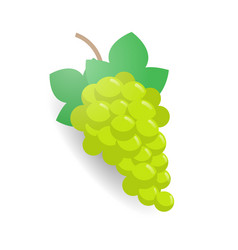 fresh juicy green grape branch icon tasty ripe vector image