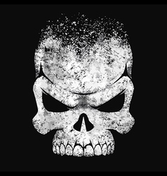Human skull black and white vector image