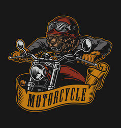 Motorcycle colorful vintage logotype vector