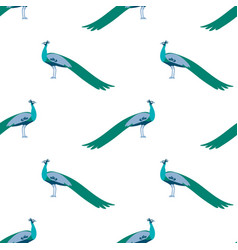 seamless pattern peacock vector image