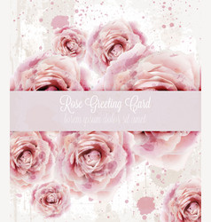 watercolor pink roses background beautiful vector image