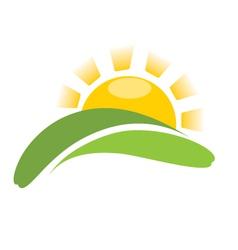 Sun and grass vector