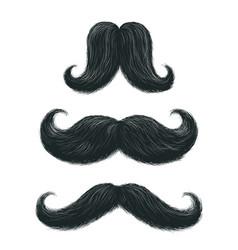 comic mustache set vector image