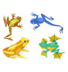 frog cartoon tropical animal cartoon nature icon vector image vector image