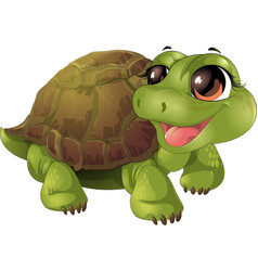beautiful cute turtler vector image