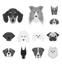 dog breeds monochrome icons in set collection for vector image