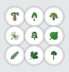 Flat icon natural set of rosemary tree timber vector