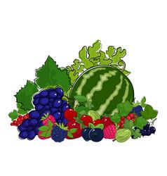 set of fresh summer berries vector image
