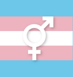 transgender sign and flag vector image