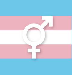 Transgender sign and flag vector