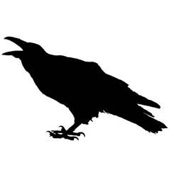 raven vector image vector image